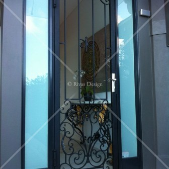 Beautiful iron security door