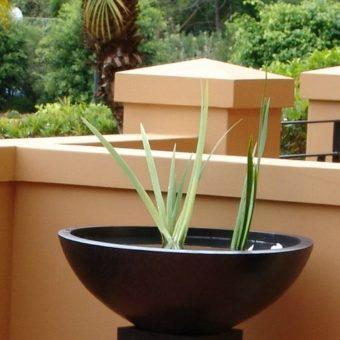 Water bowl in courtyard